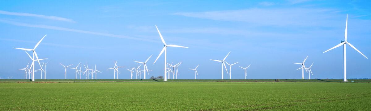 06_vindkraftensRoll_02_bild